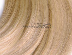 25 Russisches Echthaar Strähnen - 0,8 Gramm pro Bonding Strähne -50 cm- #16- honigblond
